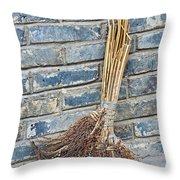 Broom, China Throw Pillow