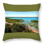 Broome Mangroves Throw Pillow