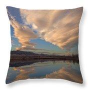 Broomtail Sky Throw Pillow