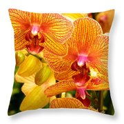 Smiling Brown And Pink Orchids Throw Pillow