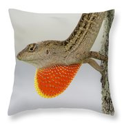 Brown Anole II Throw Pillow