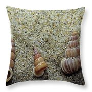 Brown-banded Wentletrap Throw Pillow