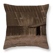 Brown Barns Throw Pillow