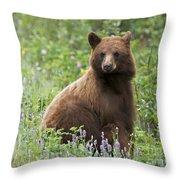Canadian Bear Throw Pillow