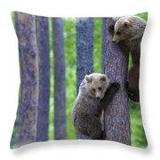 Brown Bear Climbing Lesson Throw Pillow