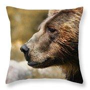 Brown Bear Golden Morning Throw Pillow