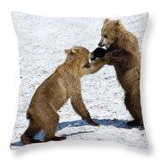 Brown Bear Ursus Arctos Cubs Play Throw Pillow