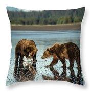 Brown Bear, Ursus Arctos, Walking Throw Pillow