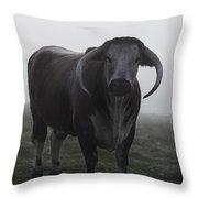 Brown Bull Throw Pillow