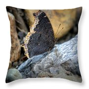 Brown Butterfly Cuyahoga Valley Throw Pillow