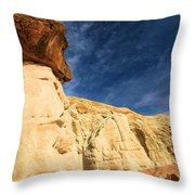 Brown Cap Throw Pillow by Adam Jewell