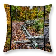Brown County Park Throw Pillow