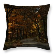 Brown County State Park Throw Pillow