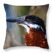 Brown Crested Kingfisher Throw Pillow