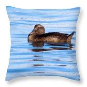 Brown Duck Throw Pillow