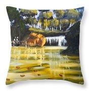 Brown Ducks Near The Waterfall Throw Pillow