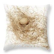 Brown Egg In Bird Nest Sepia Throw Pillow