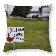 Brown Eggs Throw Pillow