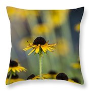 Brown Eyed Susans On Yellow And Green Throw Pillow