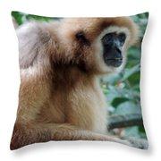 Brown Fur Throw Pillow