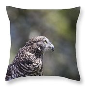 Brown Goshawk V2 Throw Pillow
