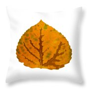 Brown Green And Orange Aspen Leaf 1 Throw Pillow
