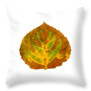 Brown Green And Yellow Aspen Leaf 3 Throw Pillow