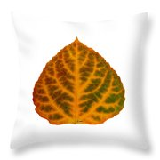 Brown Green Orange And Red Aspen Leaf 1 Throw Pillow