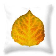 Brown Green Orange Red And Yellow Aspen Leaf 3 Throw Pillow