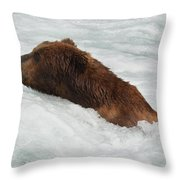 Brown Grizzly Bear Swimming  Throw Pillow