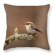 Brown-headed Nuthatch - Sitta Pusilla Throw Pillow
