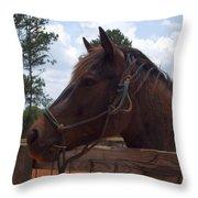 Brown Horse Throw Pillow