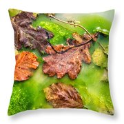 Brown Leaves In Green Pond Throw Pillow
