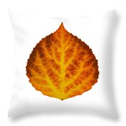 Brown Orange And Yellow Aspen Leaf 1 Throw Pillow