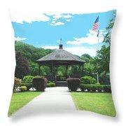 Brown Park Throw Pillow