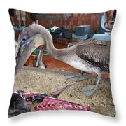 Brown Pelican At The Fish Market Throw Pillow