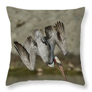 Brown Pelican Diving Throw Pillow