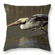 Brown Pelican Fishing Photo Throw Pillow