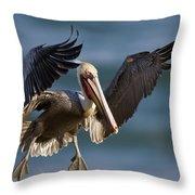 Brown Pelican Flying California Throw Pillow