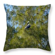 Brown Pelican In The Trees Throw Pillow