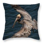 Brown Pelican Landing 2 Throw Pillow
