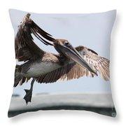 Brown Pelican Landing Throw Pillow