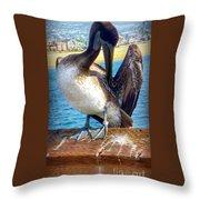 Brown Pelican Preen  Throw Pillow