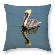 Brown Pelican Reflection Throw Pillow