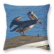 Brown Pelican Takes Flight Throw Pillow