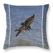 Brown Pelican - Triptych Throw Pillow