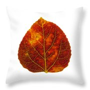 Brown Red And Yellow Aspen Leaf 1 Throw Pillow