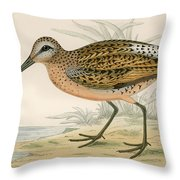 Brown Snipe Throw Pillow