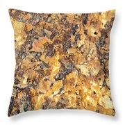 Brown Stone Abstract Throw Pillow