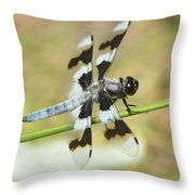 Brown Striped Double Winged Dragonfly Throw Pillow
